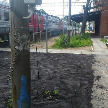 У Росії комунальники стелять асфальт на траву (фото)