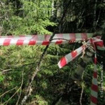У центрі Одеси англієць знайшов труп піврічної давнини