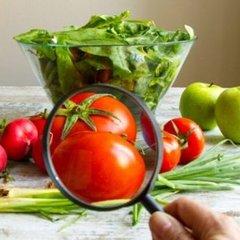 Вчені заявили, що ГМО безпечне для здоров'я