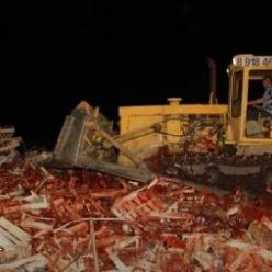 38 тонн української полуниці на Кубані розчавили бульдозером