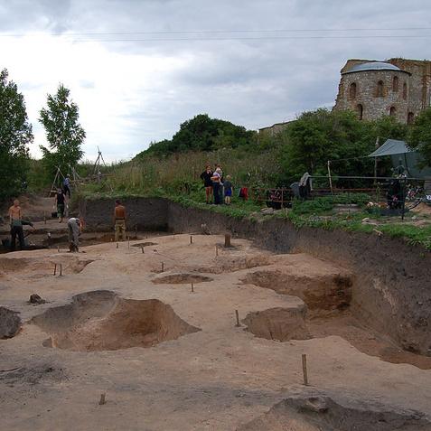 Новгородські археологи виявили невідому раніше давньоруську лайку