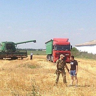 Грабіж на полі: на Миколаївщині озброєні люди прийшли збирати чужий врожай