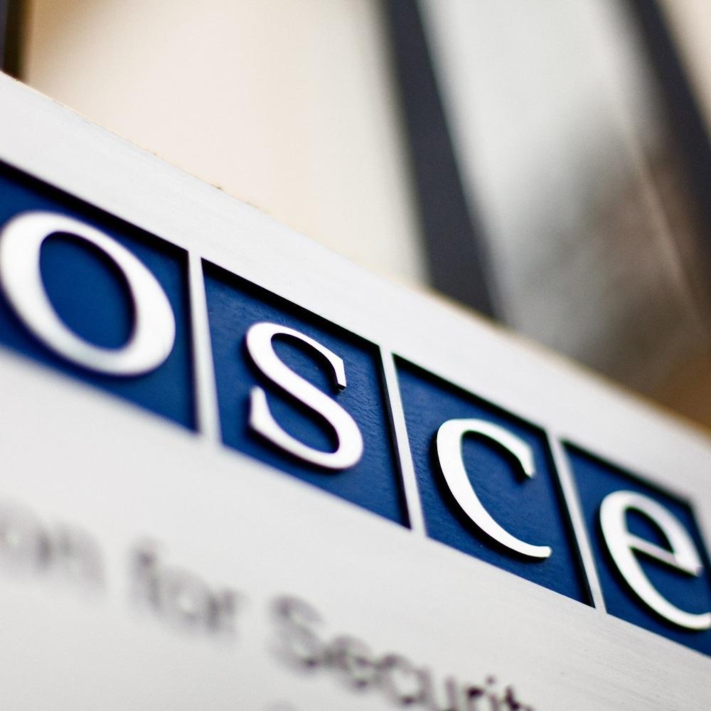 В ОБСЄ назвали причини смерті двох дітей в окупованому Комінтерновому