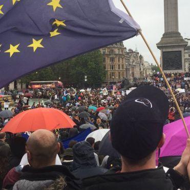 У Лондоні зібрався багатотисячний «Євромайдан» (ФОТО)