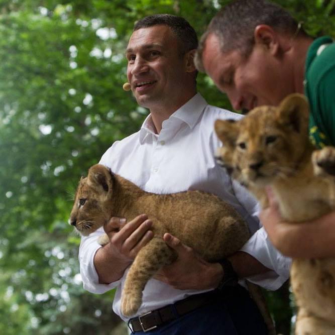 Віталій Кличко розповів, як має змінитися Київський зоопарк