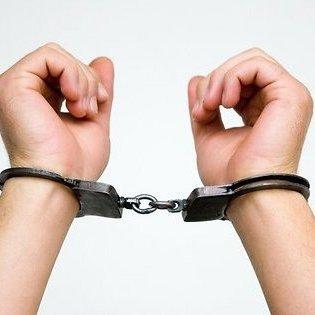 У Швеції поліцейська в бікіні затримала злодія (фото)