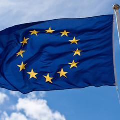 ЄС скасував санкції проти сина Януковича