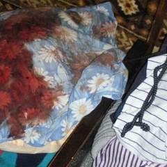 У Києві раніше судимий зловмисник  побив жінку праскою до смерті