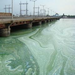 Прогнози екологів: Дніпро в Київ на межі екологічної катастрофи (відео)