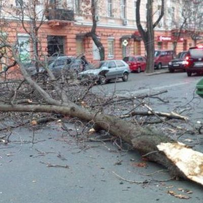 В Одесі загинула дитина, наступивши на обірваний вітром кабель