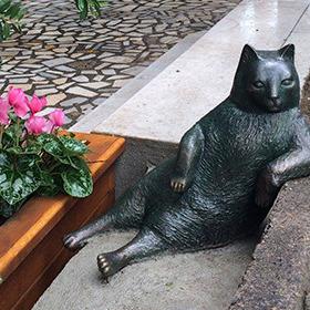 У Туреччині вкрали пам'ятник найвідомішому коту країни