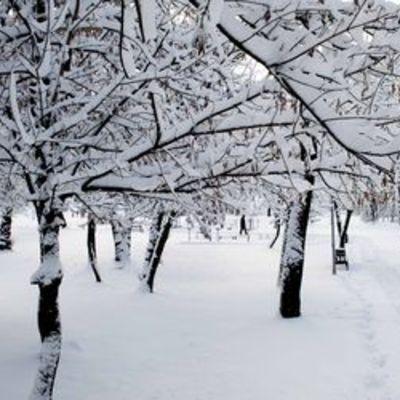 В Україну йде зима: очікують хуртовини, снігові замети та ожеледь