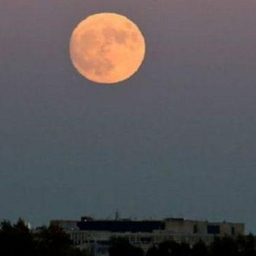 Сьогодні ввечері можна буде побачити найбільший Місяць за останні 70 років