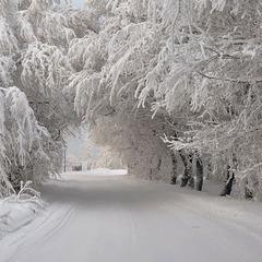 Насувається найлютіша зима століття - синоптики (відео)