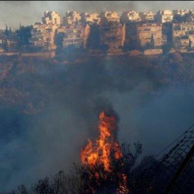 Порошенко відправив літаки гасити пожежу в Ізраїлі