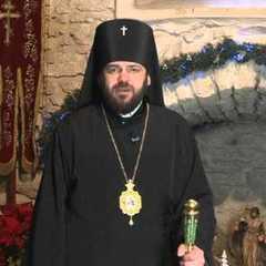 Архієрейський собор прийняв рішення щодо єпископа, який побився у нічному клубі