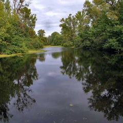 Суд повернув Києву 75 га земель ландшафтного заказника «Жуків острів»