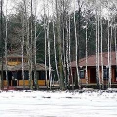 У колишній резиденції Януковича оселилися коні з Чорнобиля (відео)