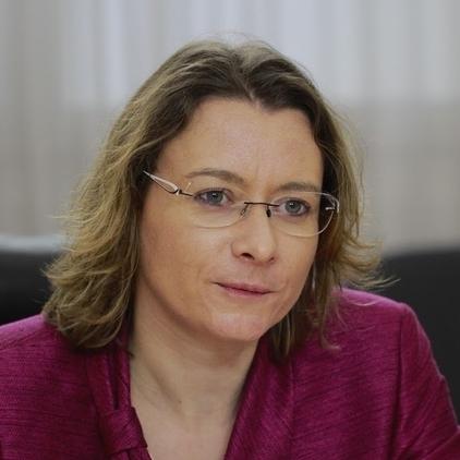«Відстрочка безвізу для України через вибори у Франції - спекуляція» - посол Франції