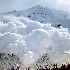 На Закарпатті із гір зійшли снігові лавини