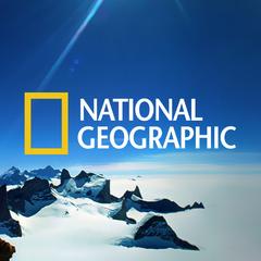 В українському телеефірі поповнення: Телеканал National Geographic мовитиме українською