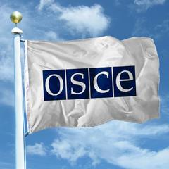 Місія ОБСЄ «пророкує» новий конфлікт на Донбасі