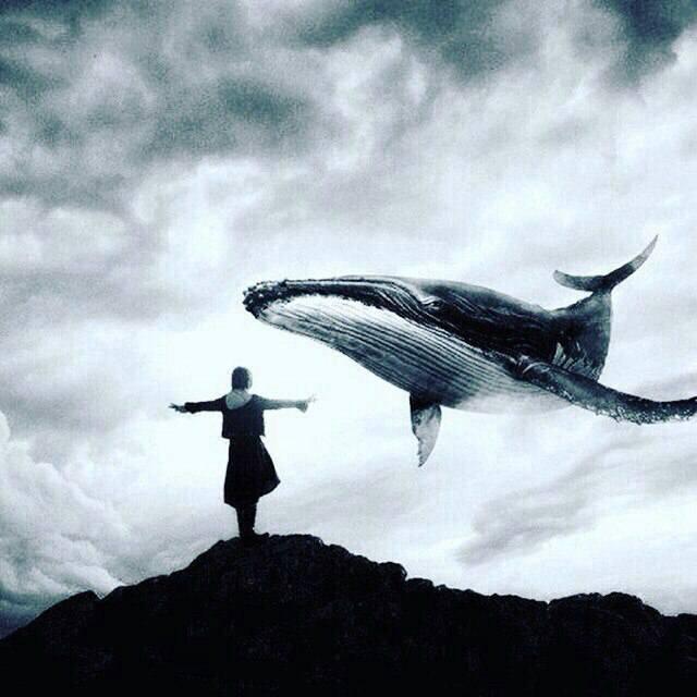 Дівчина з Прикарпаття розповіла про SMS-залякування від смертельної гри «Синій кит»