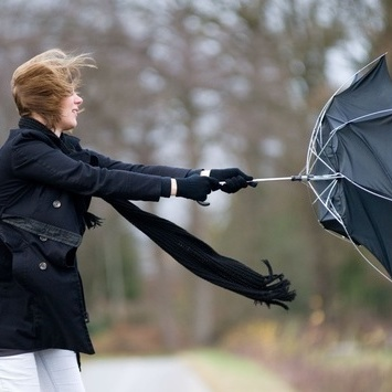 Будьте обережними: в Києві оголошено штормове попередження