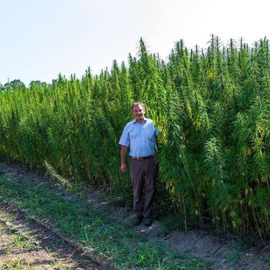 Мер Глухова хоче відкрити центр реабілітації марихуаною