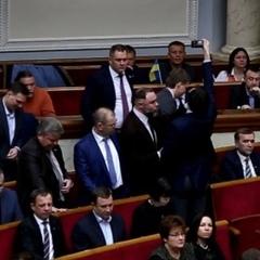 Нардепи партії Порошенка кнопкодавили за призначення Брауна аудитором НАБУ (фото)
