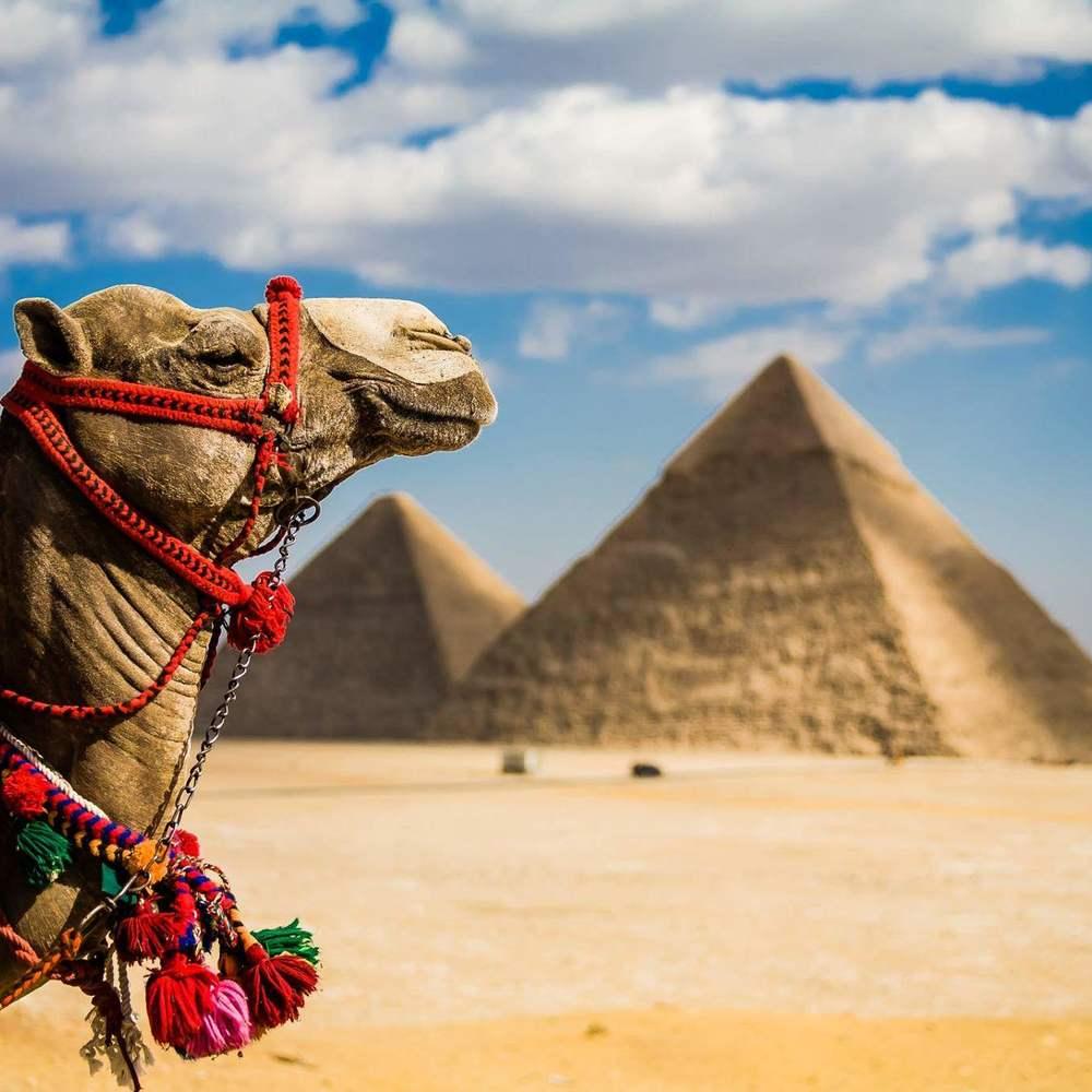 Єгипет відмовився підвищувати ціни на туристичні візи