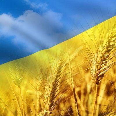 Моя країна - така одна, єдина! В мережі з'явилось захоплююче відео про Україну