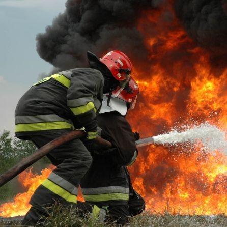 Масштабна пожежа під Києвом. З'явилося відео