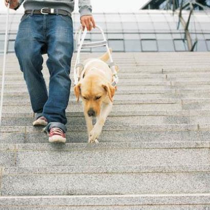 У Києві незрячого чоловіка не пустили в метро з собакою-поводирем