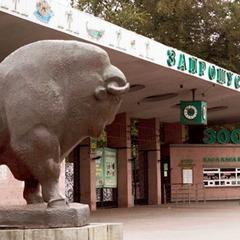 Зоопарк Києва підвищив вартість квитків для дітей і пільговиків