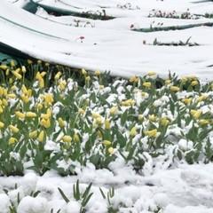 Синоптик пояснила ситуацію із погодою в Україні