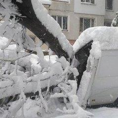 В Молдові через квітневі снігопади ввели надзвичайний стан  (фото)