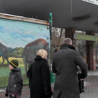 Для відвідувачів київського зоопарку діють нові правила