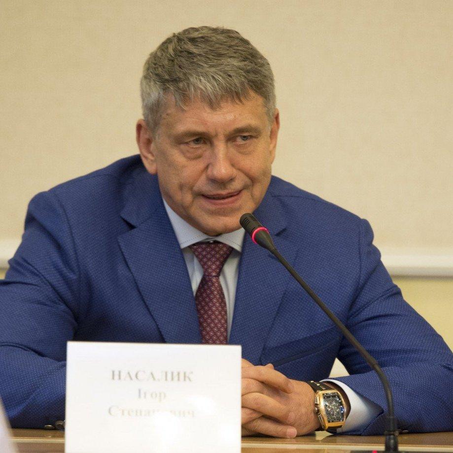 Насалик розповів, коли Україна відновить поставки електроенергії в ОРЛО