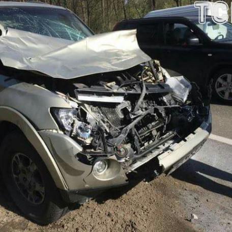 Боксер Узелков на авто збив лося та розбив свій позашляховик