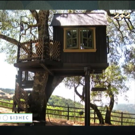 Будинок на дереві: В Україні стали будувати новий тип житла (відео)