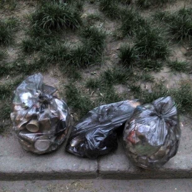 У Києві люди кидають повз смітники масу сміття (фото)