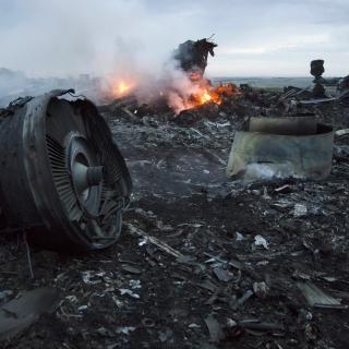Malaysia Airlines досягла мирової угоди із сім'єю загиблих в результаті краху Boeing