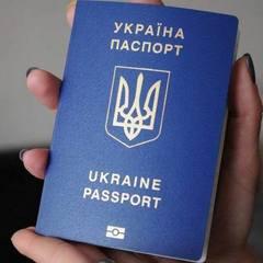 В Україні створено бота, який знаходить вільне місце у черзі за оформленням закордонного паспорта