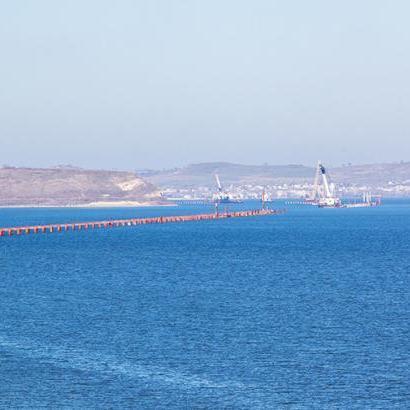 Будівництво керченського мосту може викликати екологічну катастрофу та масову гибель дельфінів