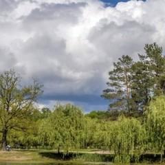 З наступного тижня з України відійде хмарна, дощова погода