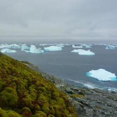 На Землі розпочалась нова геологічна епоха