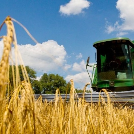 Україна виходить у лідери серед країн-аграріїв