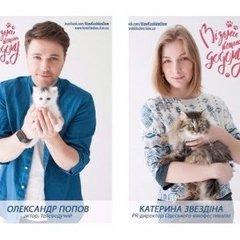 «Візьми котика додому» – українські актори зворушили благодійним проектом