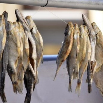 Смертельний ботулізм: У Києві заборонили продаж риби